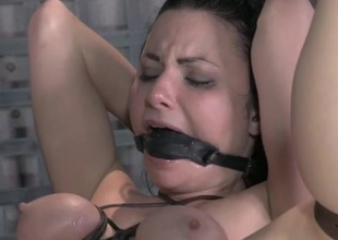 Gagged plus bound hottie takes cock surrounding will not hear of ass