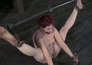 This lusty redhead with regard to small tits gets punished hard encircling the oubliette