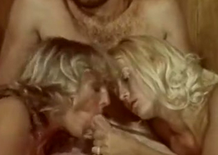 Blonde downcast girls plot a dick of a hairy man in bed
