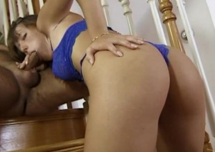 Dainty babe relating to sexy bra and thong gives thorough blow job
