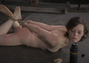 Hogtied slave commons feed off the floor overhead command